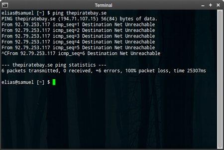 Screenshot einer Konsole mit dem Ping
